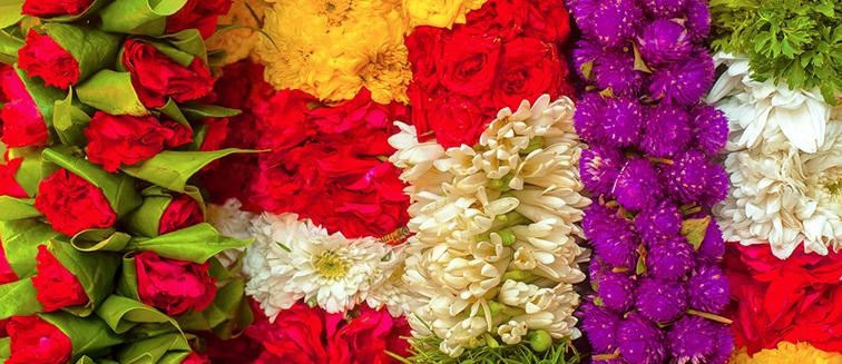 Blumenkarneval von Chiang Mai