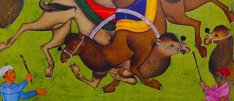 Kamelringen-Festival in Selcuk