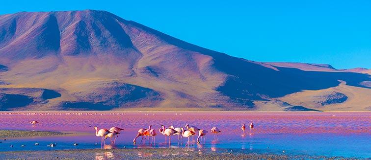 Eduardo Avaroa Naturschutzgebiet