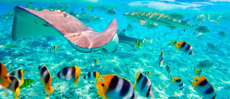 Die Insel Maafushi