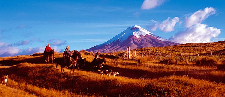 Nationalpark Cotopaxi